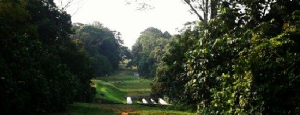 Belukar Track is one of Trek Across Singapore.