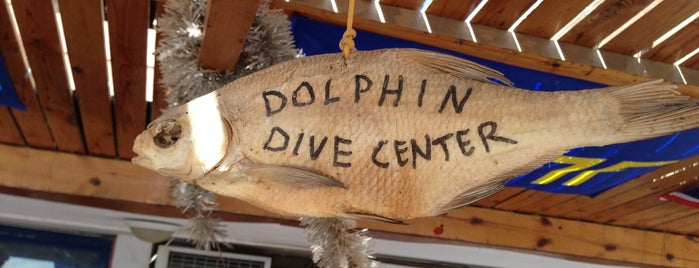 Dolphin Dive Center is one of Be Charmed @ Sharm El Sheikh.