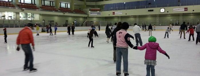 Edogawa Sports Land is one of スケートリンク.