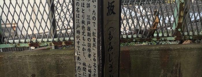 紅葉坂 (もみじざか) is one of 坂道.