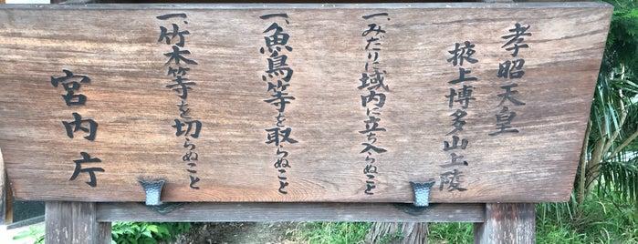孝昭天皇 掖上博多山上陵 is one of 天皇陵.