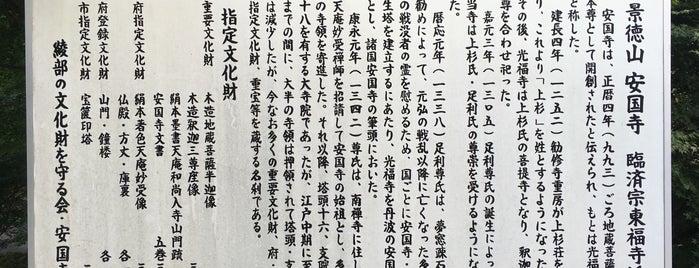 景徳山 安国寺(丹波国安国寺) is one of 中世・近世の史跡.