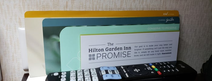 Hilton Garden Inn Chicago/North Loop is one of Places I've stayed.