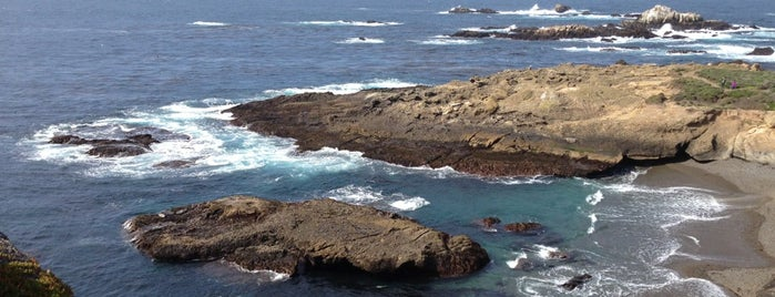 Point Lobos State Reserve is one of Attractions to Visit.