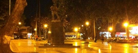 Plaza Blacutt is one of 100% Santa Cruz.