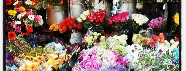 Urban Flowers is one of The 13 Best Flower Shops in San Francisco.