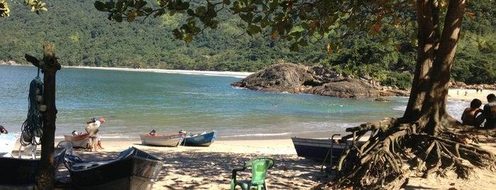 Praia do Meio is one of Praia.