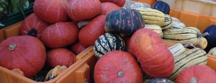 Copley Square Farmer's Market is one of USA Boston.