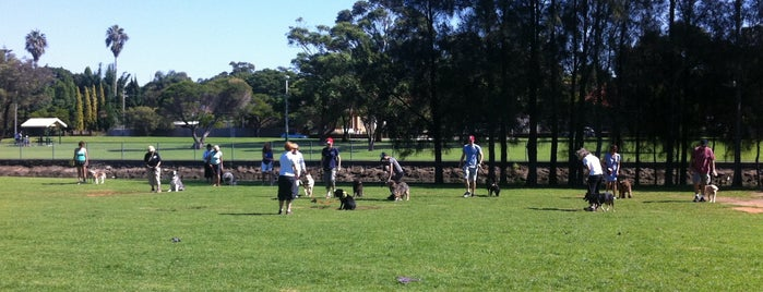 Haberfield Dog Park is one of Glam dogs in Sydney.