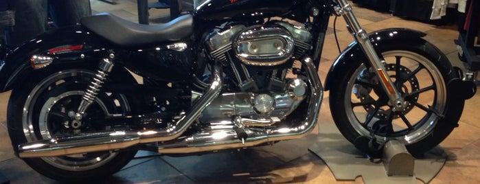Barb S Harley Davidson Philadelphia Airport