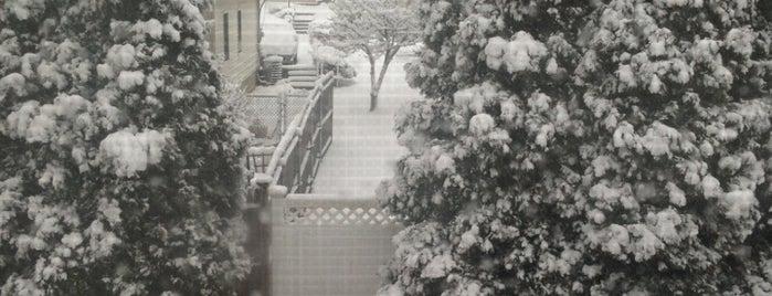 Snowpocalypse: Winter 2013-2014 is one of Pocalypses I've Survived.