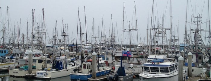 Pillar Point Harbor is one of Day Trips.