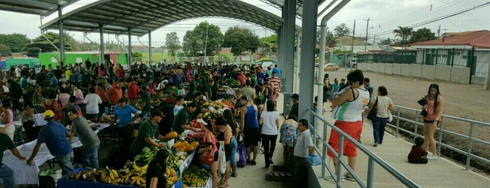 Feria Del Agricultor San Rafael is one of Ferias del Agricultor.