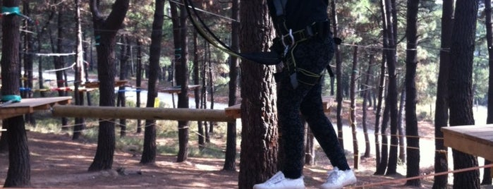 Saysu Macera Parkı is one of cemle gitmek gerek.