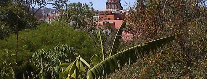San Miguel de Allende is one of Recreation/ outings.