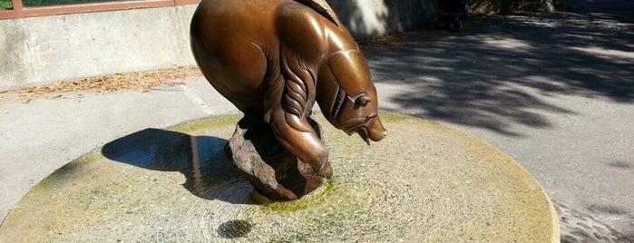Fishing Bear is one of Public Art in Philadelphia (Volume 1).