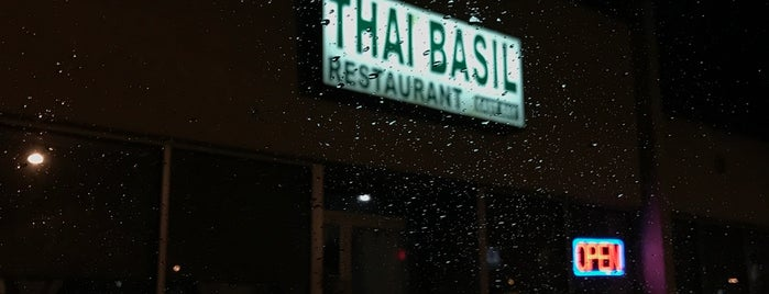 Thai Basil Restaurant is one of St Pete / Tampa area vegan options.