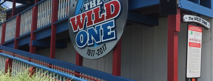 The Wild One is one of ROLLER COASTERS.