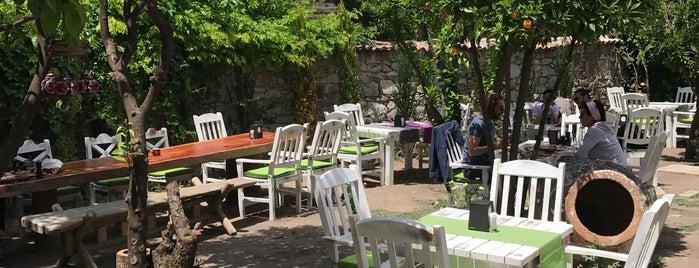 İstifçi Fine Art & Garden is one of İzmir.