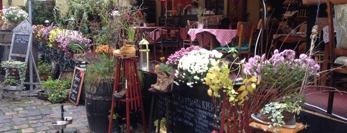 Кафе 1 / Cafe 1 is one of коли у Львовi.
