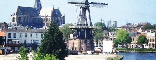 Haarlem is one of Cities =).