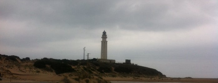 Cádiz 2012