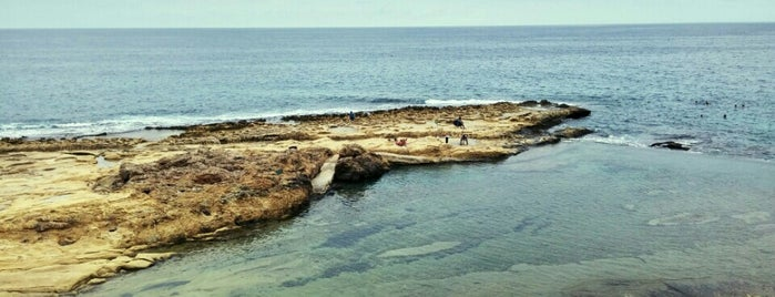 Sliema Beach is one of Malta.