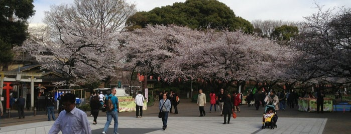 Ueno Park is one of Tokyo's Best Great Outdoors - 2013.
