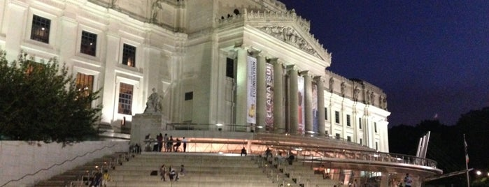 Brooklyn Museum is one of New York.