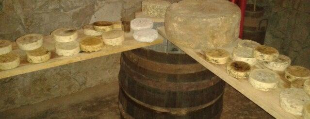 Finca Vai is one of Ruta queso y vino Qro..