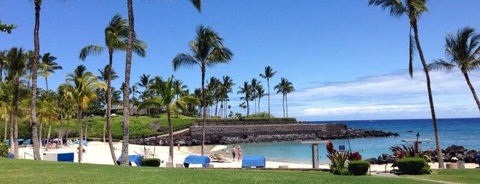 Mauna Lani Beach Club is one of Big Island Eats.