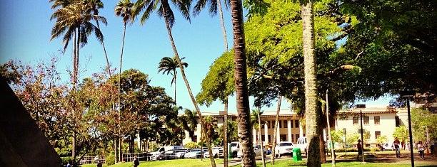 University of Hawai'i at Mānoa is one of NCAA Division I FBS Football Schools.