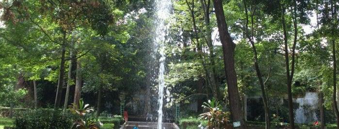 Parque Los Berros is one of Muchos.