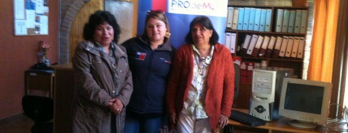 Fundacion PROdeMU, Quillota is one of mis favoritos.