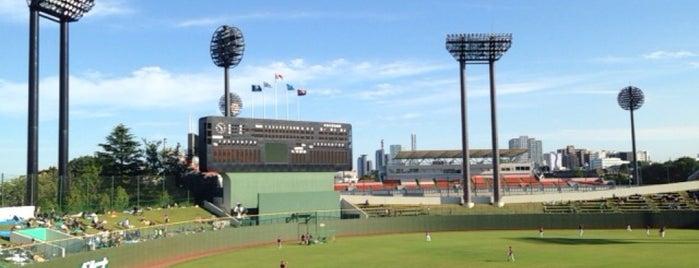 Omiya Park Baseball Stadium is one of Japan Triple Play.