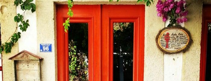 Kırmızı Ardıç Kuşu is one of Alaçatı.