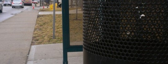 IndyGo Bus Stop is one of frequently.