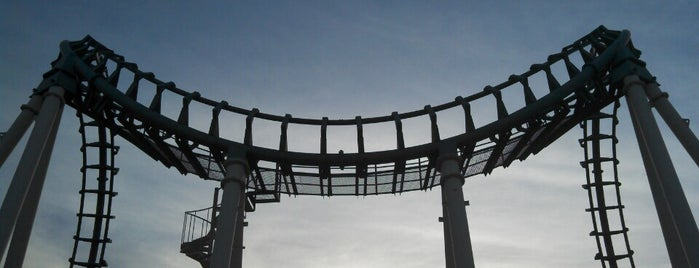 Boomerang is one of ROLLER COASTERS.