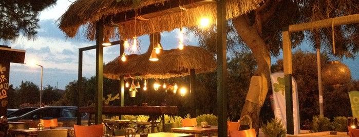 Molly Malone's is one of İzmir'de gidilecek yerler.