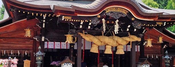 Kushida Shrine is one of FUKUOKA.