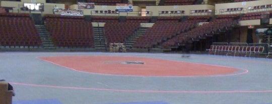 Municipal Auditorium is one of KC Sports Venues.