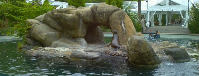 Central Park Zoo is one of Places to visit NYC 2013.