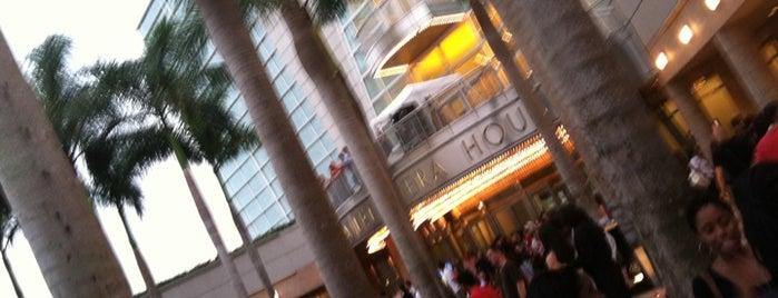 Miami & Fort Lauderdale Performing Arts