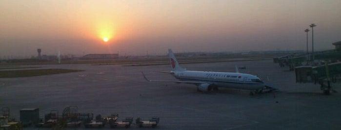 Tianjin Binhai Int'l Airport (TSN) is one of World AirPort.