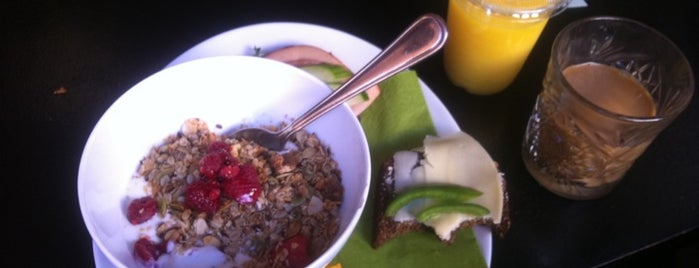 Newt is one of Stockholm Misc.