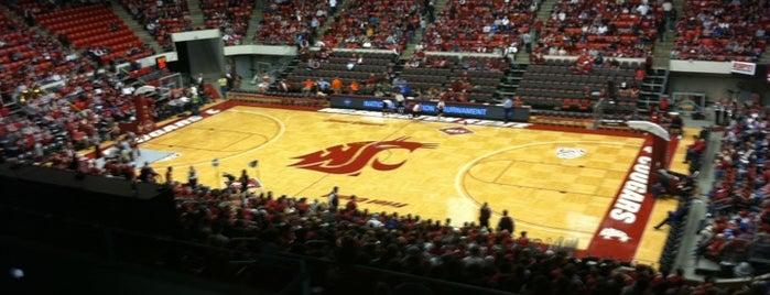 Beasley Coliseum is one of Experience Teams & Venues.