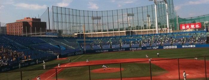 Meiji Jingu Stadium is one of 読売巨人軍.