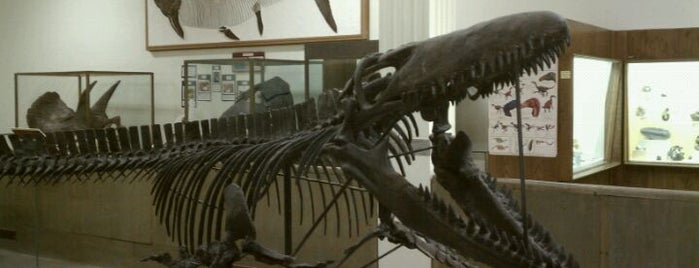 SDSM&T Museum of Geology is one of Rapid City, SD.