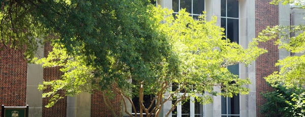 Andrews Hall is one of Academic Buildings.