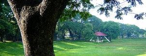 Sunken Garden is one of All-time favorites in Philippines.